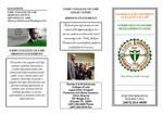Community Economic Development Clinic by Legal Clinic Program