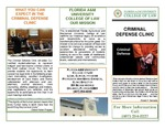 Criminal Defense Clinic by Legal Clinic Program